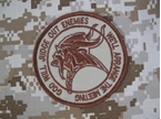 Picture of Devgru Navy SEALs Team Judge Patch (Tan) mbss mlcs aor1
