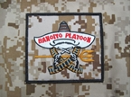 圖片 Devgru ACT OF VALOR BANDITO PLATOON PATCH (AOR1)