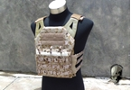 Picture of TMC Jungle Plate Carrier (AOR1)