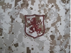Picture of Navy SEAL Team 6 DEVGRU Gold Team Patch (AOR1)