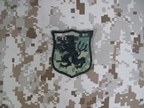 Picture of Navy SEAL Team 6 DEVGRU Gold Team Lion Patch (AOR2)