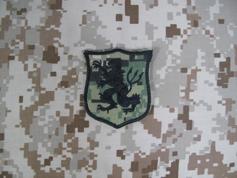 Navy SEAL Team 6 DEVGRU Gold Team Lion Patch (AOR2)