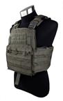 Picture of TMC Combat Plate Carrier Vest 2016 Version (RG)