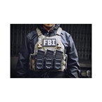 Picture of TMC Lightweight Saber Plate Carrier (RG)