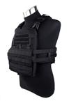 Picture of TMC Modular Assault Vest System Plate Carrier 2019 Ver (Black)