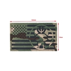 Picture of TMC SEALS Flag Patch (Multicam) (Free Shipping)